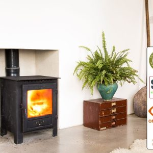 esse one woodburner defra 2022 in Luton
