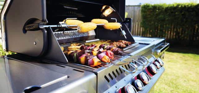 Napoleon gas bbq barbecues